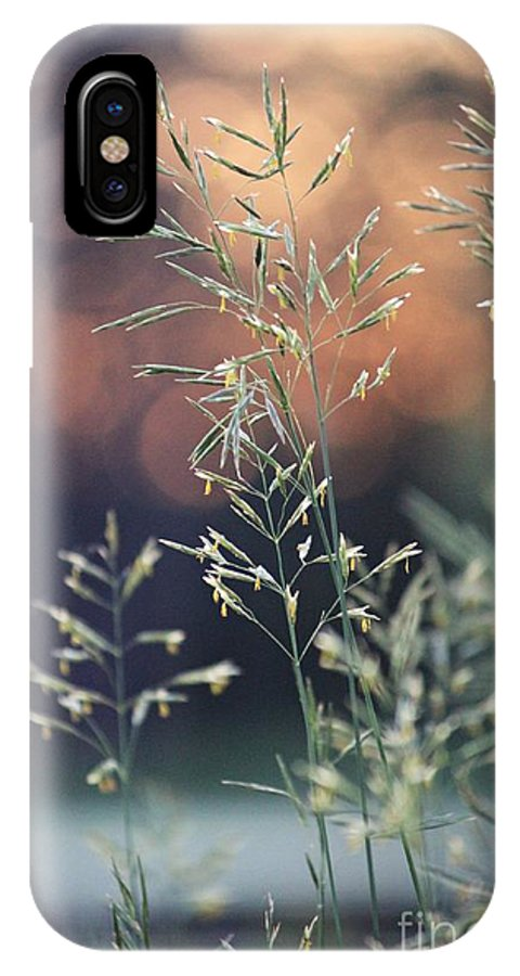 Sunset IPhone X / XS Case featuring the photograph Wild Grass by Lauren Maki