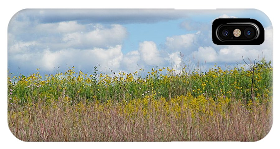 Park IPhone X Case featuring the photograph Wild Grass Two by Tina M Wenger