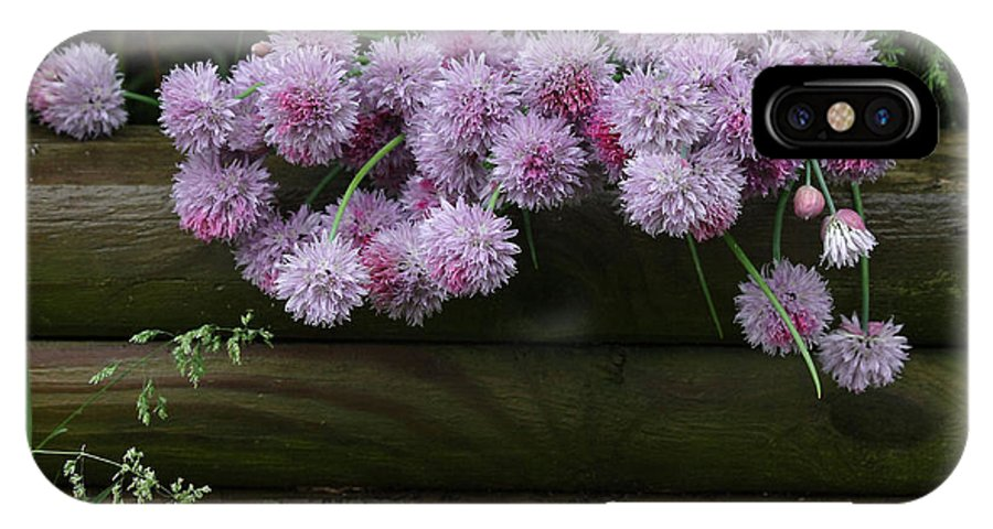 Still Life IPhone X Case featuring the photograph Wild Onion Flowers by Luv Photography