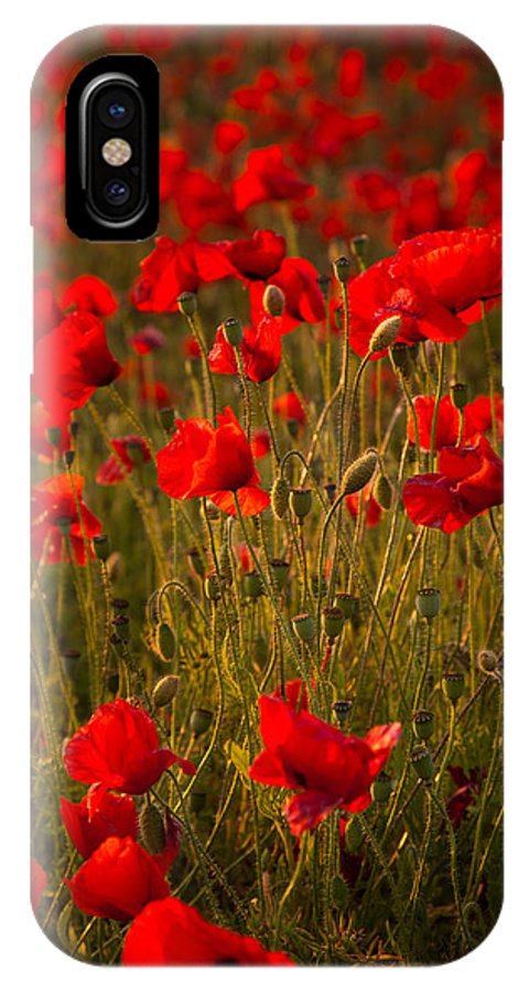 Poppies IPhone X Case featuring the digital art Wild Poppies by Kevin Marston