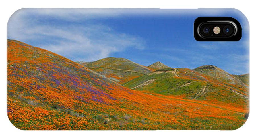 Wildflowers IPhone X Case featuring the photograph Wildflower Extravaganza by Lynn Bauer