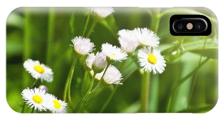 Floral IPhone X Case featuring the photograph Wildflower by Kellie Prowse