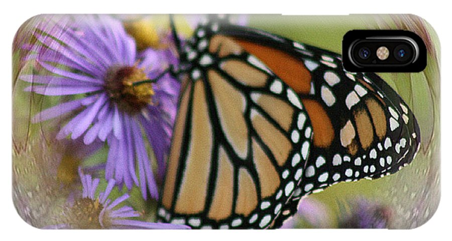 Monarch IPhone X Case featuring the photograph Wildflower Visitor by Sharon McLain