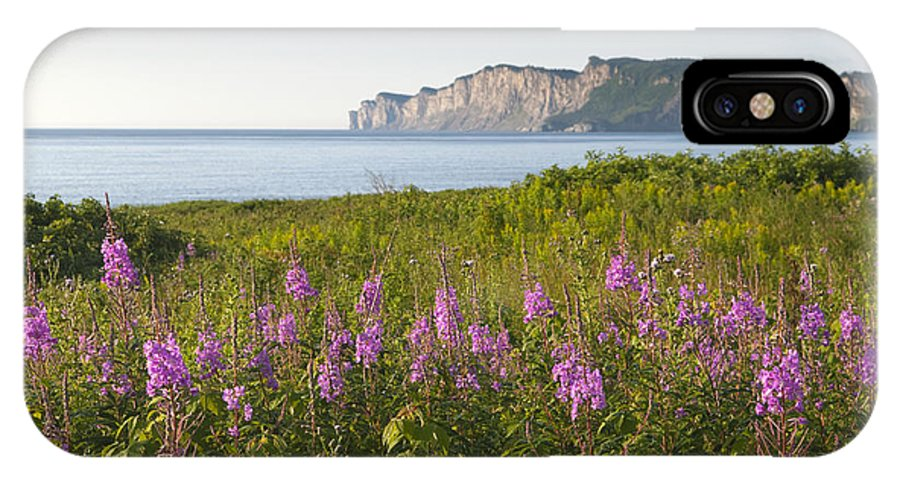 Beauty In Nature IPhone X Case featuring the photograph Wildflowers In Gaspe by Gord Horne
