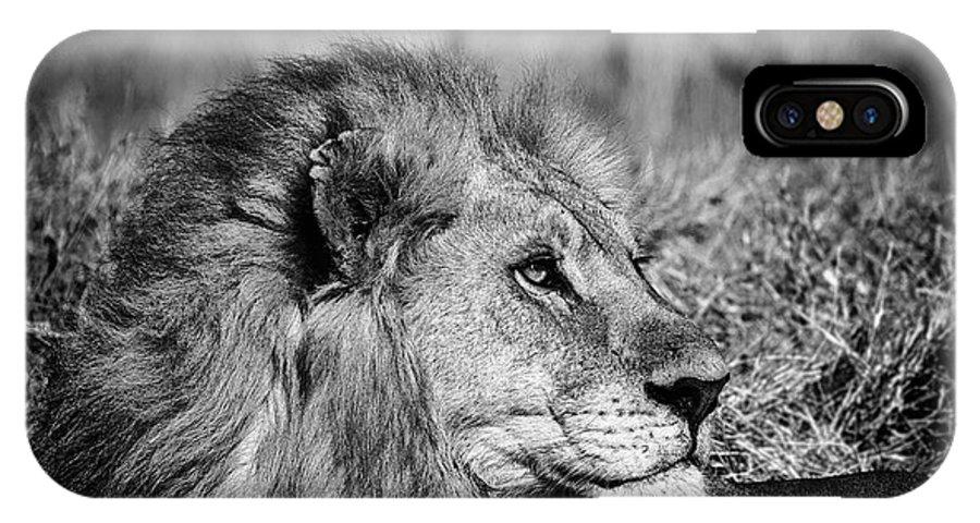 Art IPhone X Case featuring the photograph Wildlife Lion by Gigi Ebert
