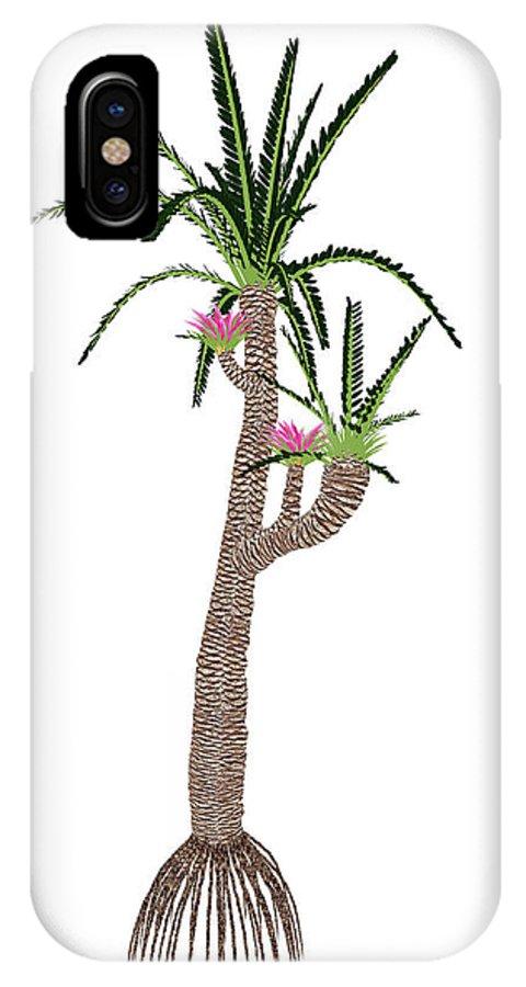 Williamsonia Gigas IPhone X Case featuring the photograph Williamsonia Gigas Prehistoric Tree by Elena Duvernay