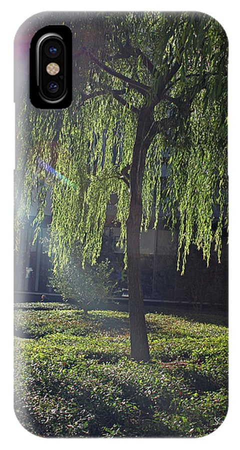 Willow IPhone X Case featuring the photograph Willow Magic by Suzanne Gaff