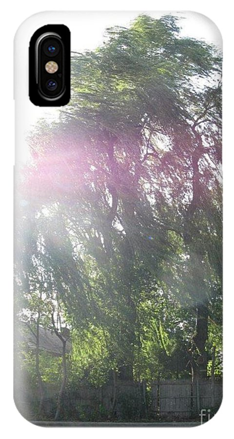 Willow Tree IPhone X Case featuring the photograph Willow Tree by Suzy Kangas