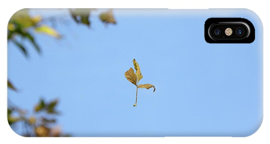 Leaf IPhone X / XS Case featuring the photograph Wind Dancer by Laura Yamada