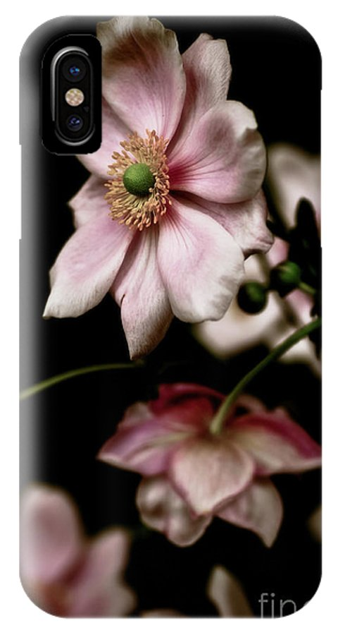 Botanical IPhone X Case featuring the photograph Wind Flowers by Venetta Archer