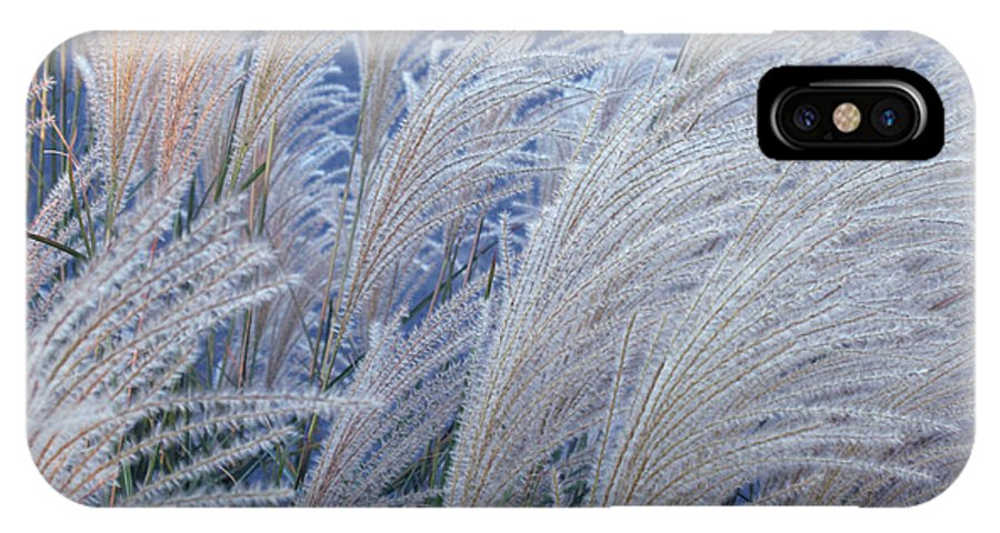 Wheat IPhone X Case featuring the photograph Windblown by Barbara McDevitt