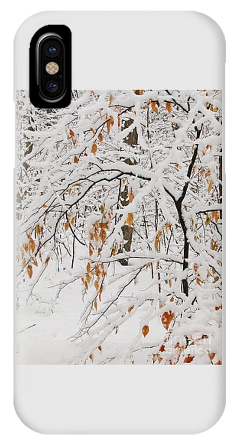 Winter IPhone X Case featuring the photograph Winter Branches by Ann Horn