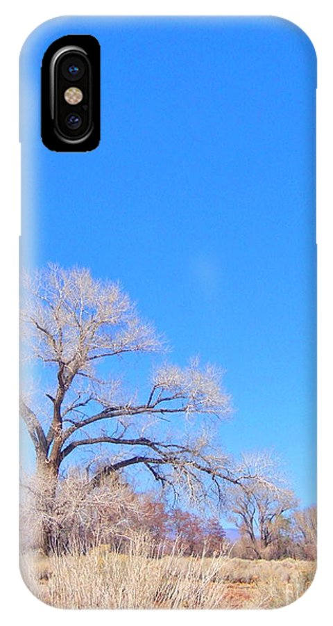 Sky IPhone X Case featuring the photograph Winter Can Be Blue by Marilyn Diaz