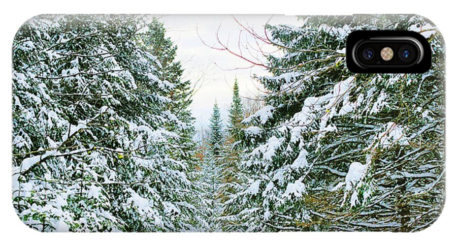 Forest IPhone X Case featuring the photograph Winter Forest Landscape by Sylvie Bouchard
