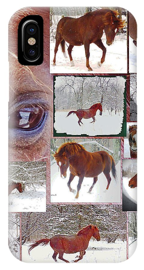 Chestnut IPhone X Case featuring the photograph Winter Moments- With The Flashy Paso Fino Stallion by Patricia Keller