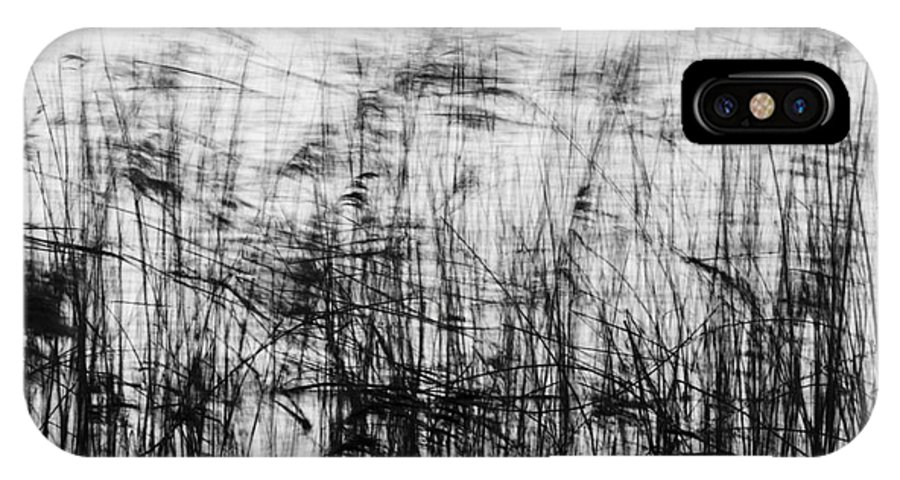 Reed IPhone X Case featuring the photograph Winter Reeds by Julian Eales
