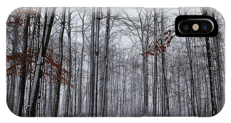 Hilton Conservation Park IPhone X / XS Case featuring the photograph Winter Storm In The Forest by Debbie Oppermann