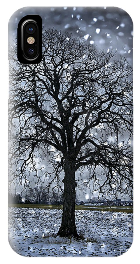 Lonely IPhone X Case featuring the photograph Winter Tree In Snowfall by Elena Elisseeva
