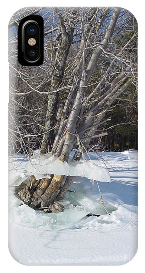 Winter IPhone X Case featuring the photograph Winter Tree Skirt by Nancie Johnson