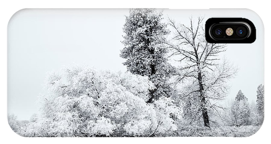 Winter IPhone X Case featuring the photograph Winter White by Mike Dawson