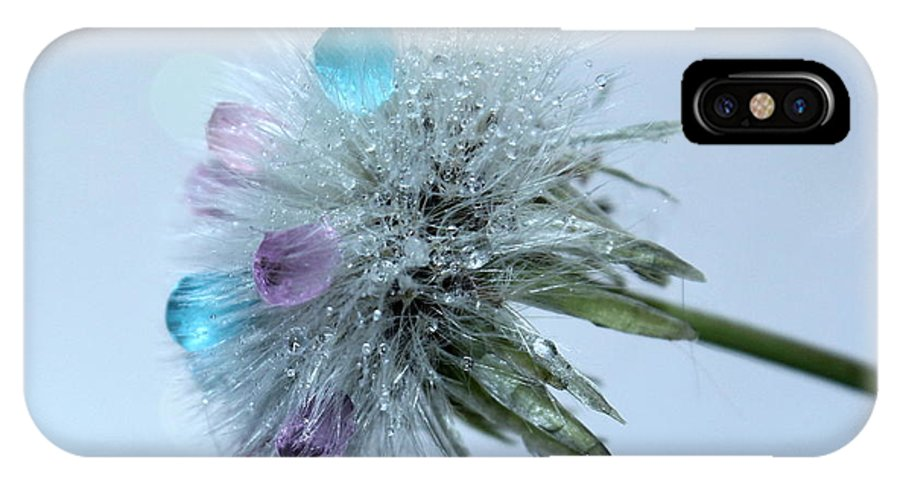 Dandelion IPhone X Case featuring the photograph Winter Wish by Krissy Katsimbras