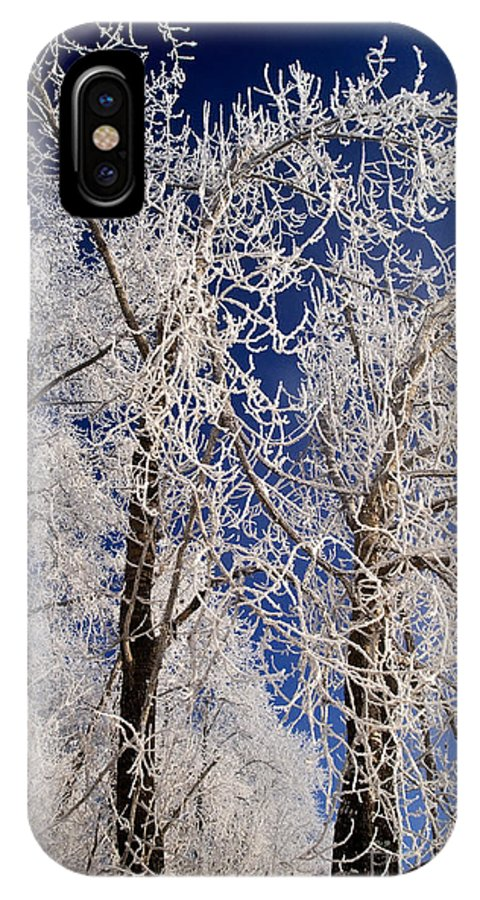 Winter Time IPhone X Case featuring the photograph Winter Wonderland 7 by Terry Elniski