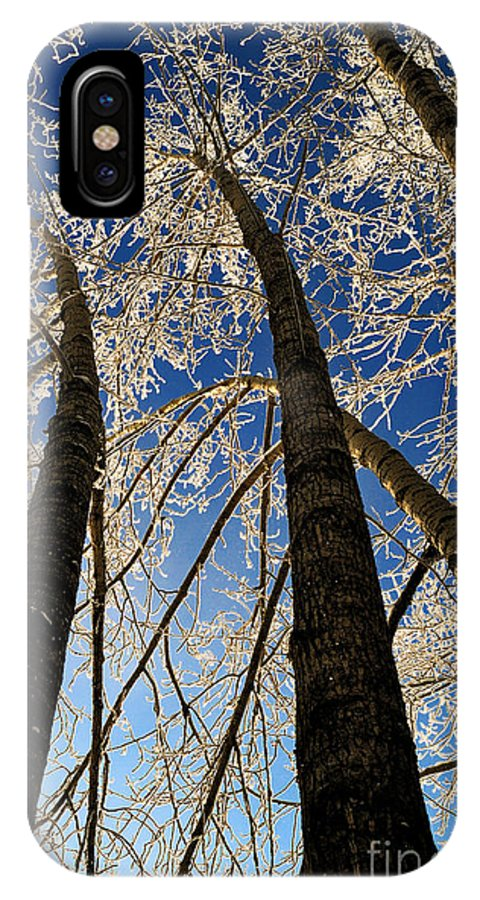 Winter Time IPhone X Case featuring the photograph Winter Wonderland 8 by Terry Elniski