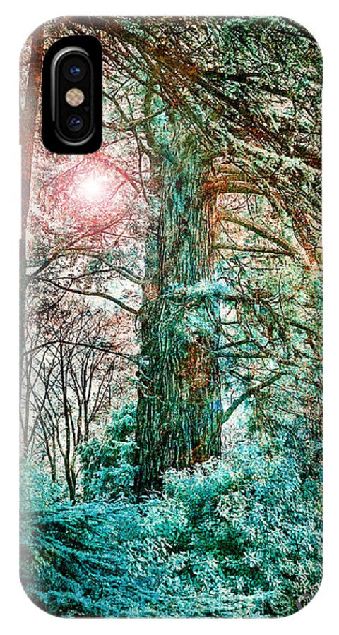 Sun IPhone X Case featuring the photograph Wintersun by Russ Brown