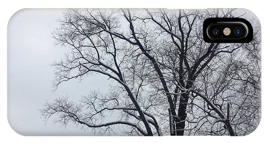 Nature IPhone X Case featuring the photograph Wintry Tree by Hannah Rose