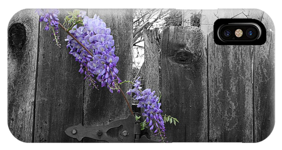 Landscape IPhone X Case featuring the photograph Wisteria by Dylan Punke
