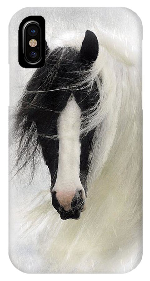 Horses IPhone X Case featuring the photograph Wisteria by Fran J Scott