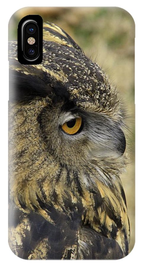 Great Horned Owl IPhone X Case featuring the photograph Wize Owl 2 by John Straton