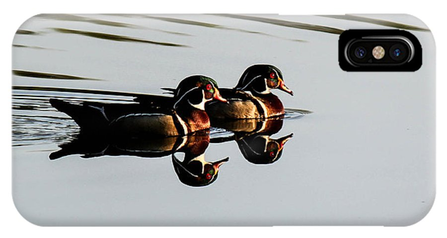 Pond IPhone X Case featuring the photograph Wood Ducks Reflection by Frank Selvage