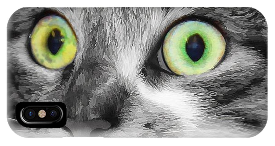 Brown Tabby IPhone X Case featuring the photograph Wow by Joyce Baldassarre