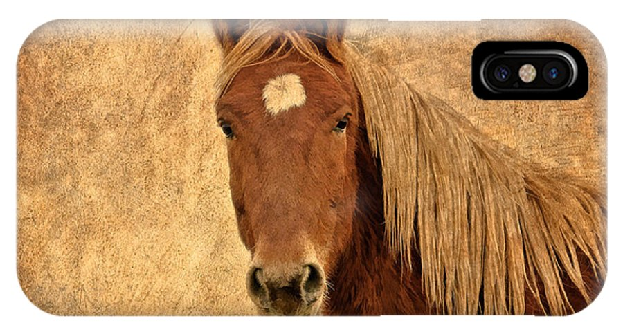 Horses IPhone X Case featuring the photograph Wrangler by Athena Mckinzie