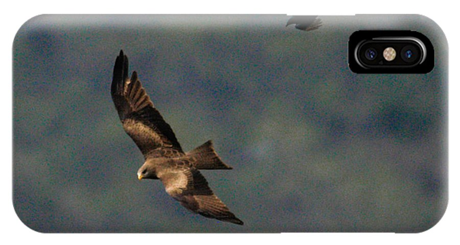 Africa IPhone X Case featuring the photograph Ybk Under Fire 2 by Alistair Lyne