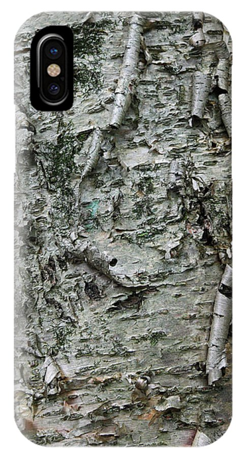 Photograph IPhone X Case featuring the photograph Yellow Birch Bark by Suzanne Gaff