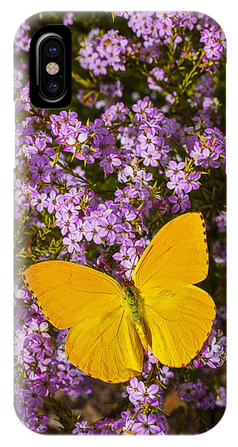 Pink IPhone X Case featuring the photograph Yellow Butterfly On Pink Flowers by Garry Gay