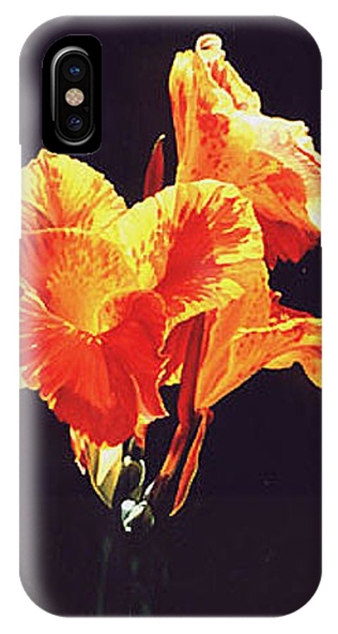 Floral IPhone Case featuring the painting Yellow Canna by Gary Hernandez