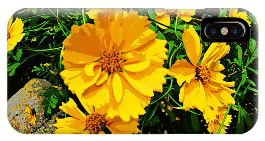 Flower Photographs IPhone X Case featuring the photograph Yellow Flowers Cape Cod by Jim Rabenstine