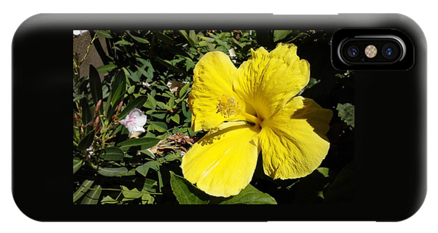 Garden IPhone X / XS Case featuring the photograph Yellow Hibiscus For Mom by Jay Milo
