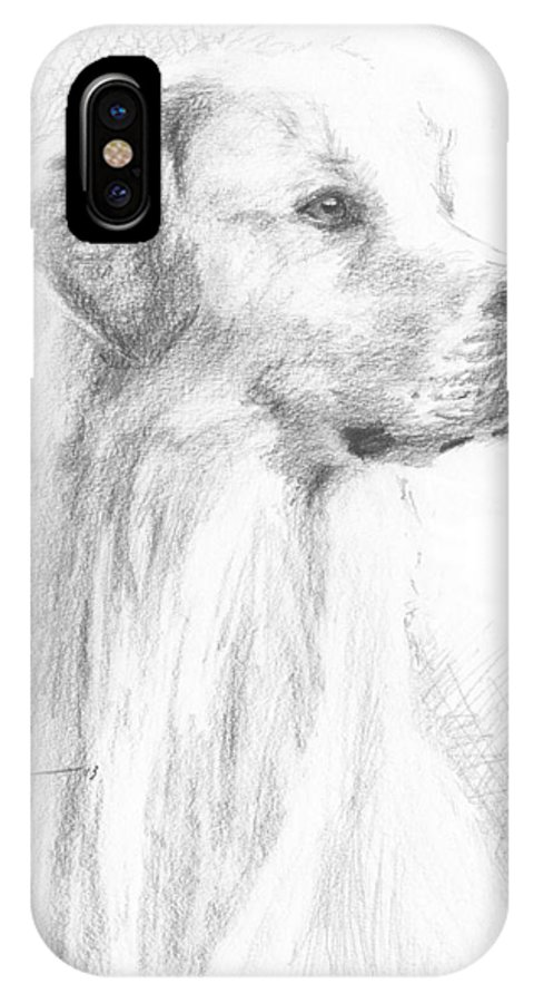 <a Href=http://miketheuer.com Target =_blank>www.miketheuer.com</a> Yellow Labrador Show Dog Pencil Portrait IPhone X Case featuring the drawing Yellow Labrador Show Dog Pencil Portrait by Mike Theuer