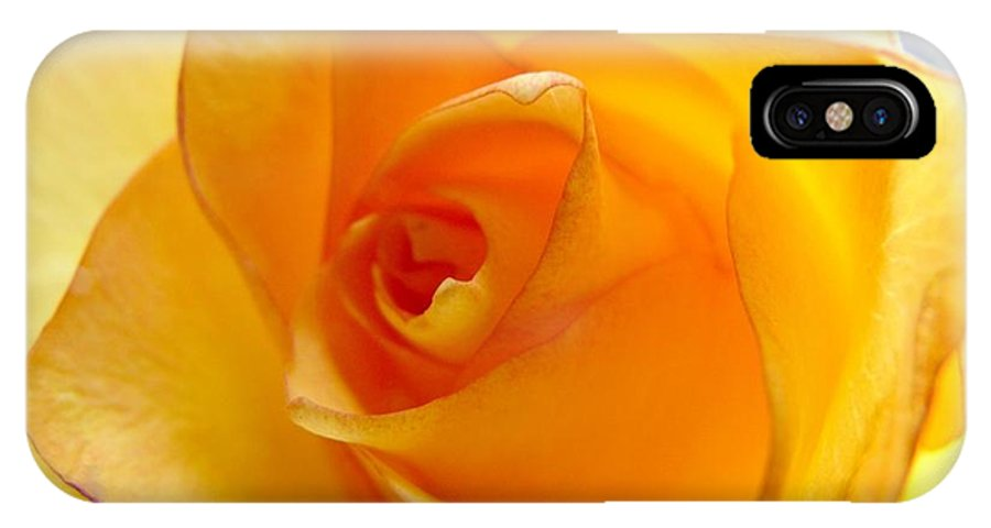 Colorado IPhone X Case featuring the photograph Yellow Orange Rose by Marilyn Burton