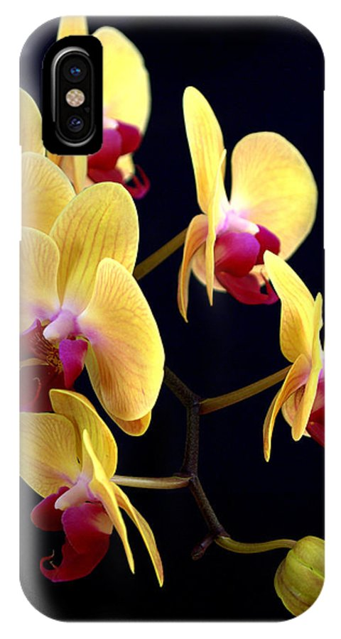 Yellow IPhone X Case featuring the photograph Yellow Orchids by Nathan Abbott
