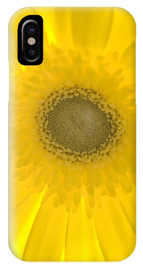 Flower IPhone X Case featuring the photograph Yellow Petals by Leah McDaniel