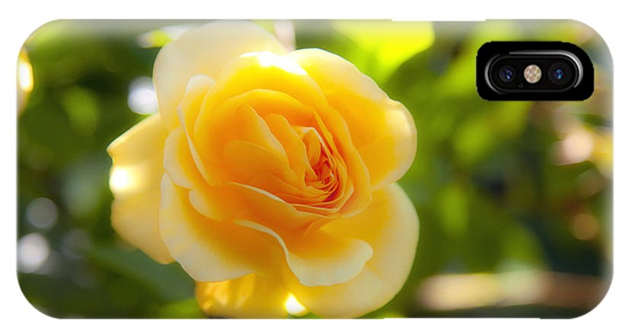 Rose IPhone X Case featuring the photograph Yellow Rose by Fabian Roessler