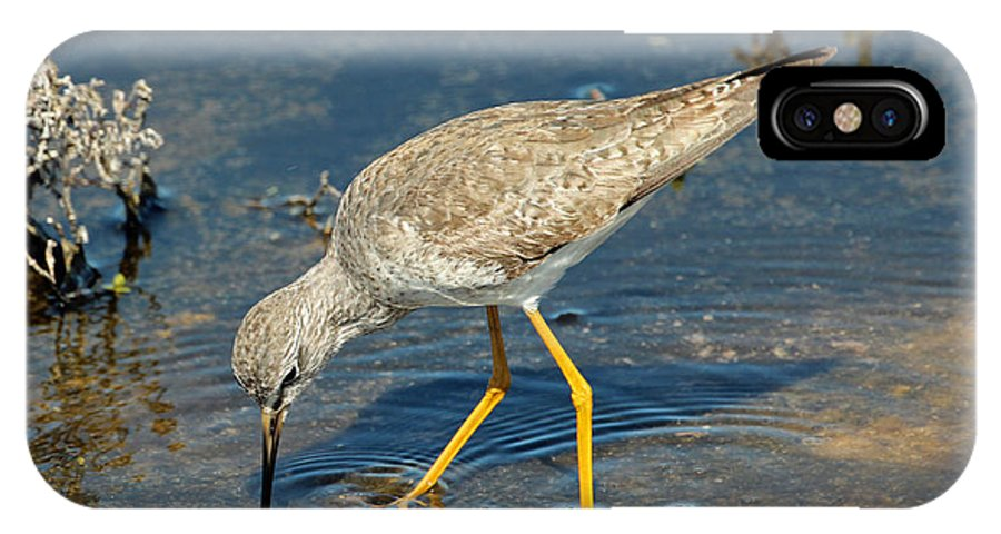 Bird IPhone X Case featuring the photograph Yellowlegs by Bob Camp