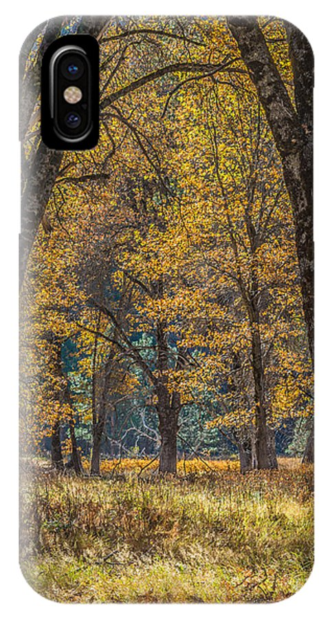 Yosemite Np IPhone X Case featuring the photograph Yosemite Black Oaks by Daniel Ryan