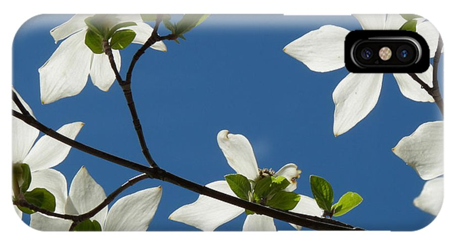 Dogwood IPhone X Case featuring the photograph Yosemite Dogwood Blossoms by Jeff Lowe