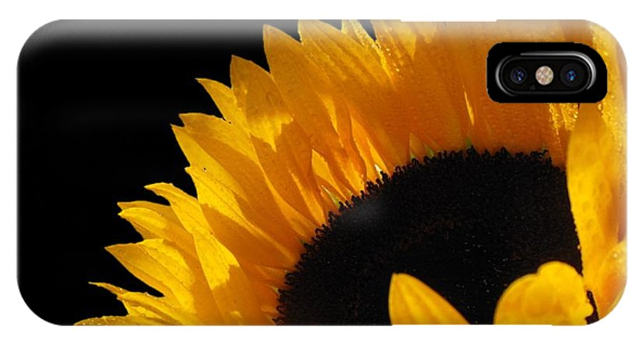 Image Of A Sunflower IPhone X Case featuring the photograph You Are My Sunshine by Emily Muzak and Art